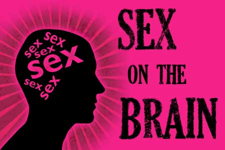 Human sexual anatomy and physiology