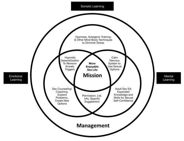 Sex Problems Strategies Diagram 2 copy
